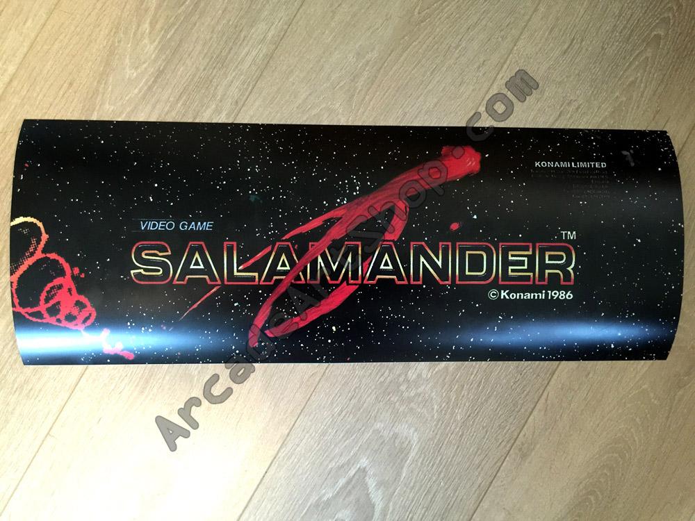 Konami Electrocoin Salamander Marquee Arcade Art Shop