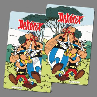 asterix side art pair